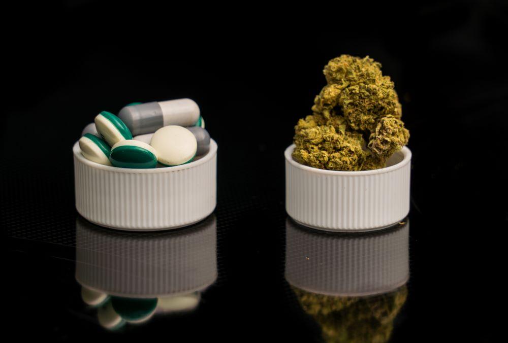 cannabis douleur