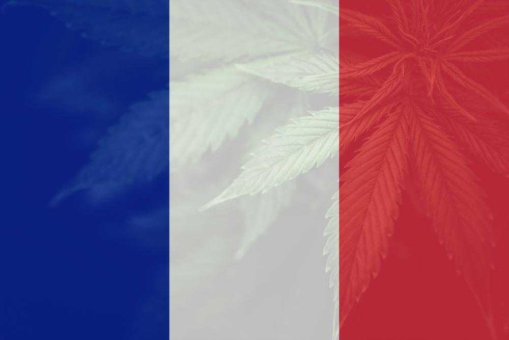 cannabis médical france