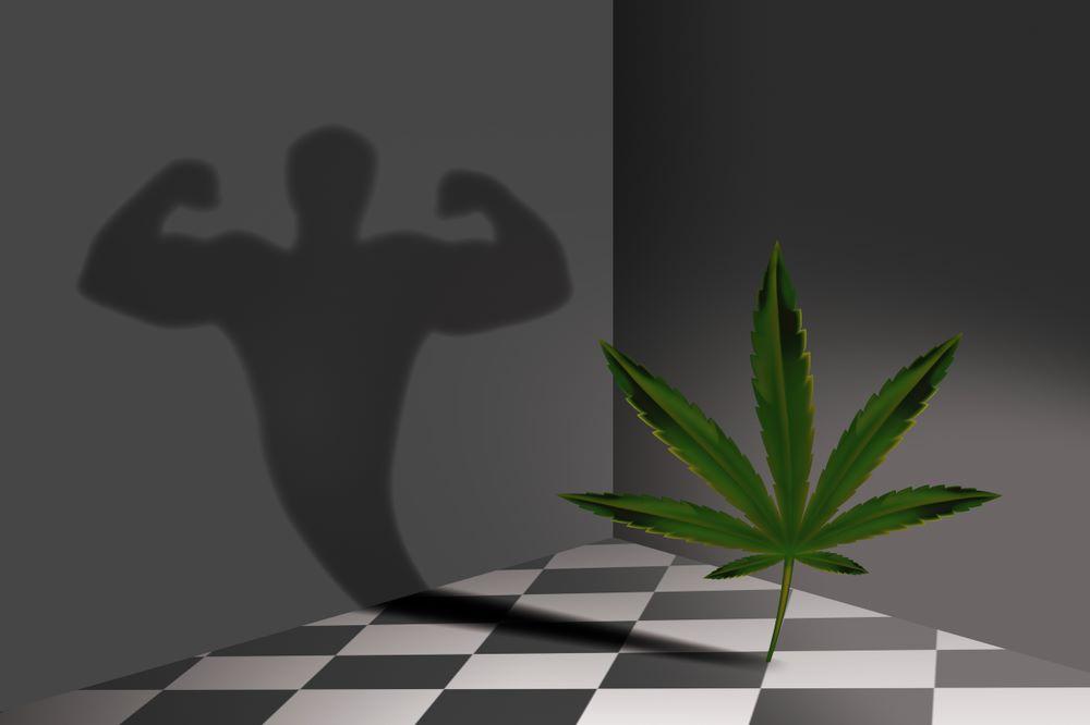 cannabis médical sportifs