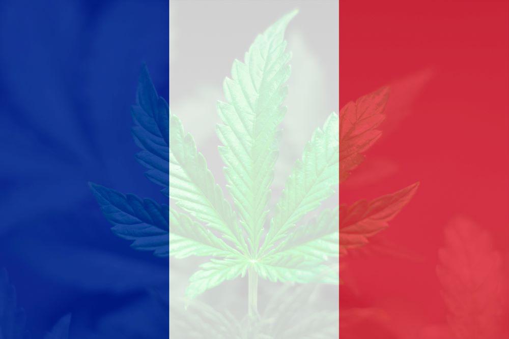 français dépénalisation cannabis